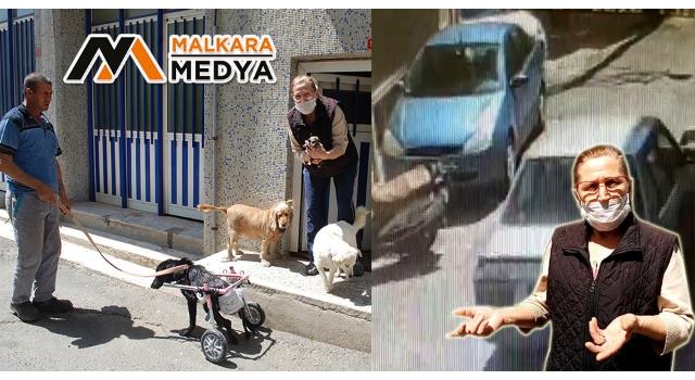 """Malkara'da """"Sinirden Ellerim Titriyor'"""" diyerek köpeğini ezen sürücüye tepki gösterdi"""