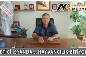 Malkara Süt Üreticileri Başkanı Osman Turgutlugil; Üretici İsyanda!.. Hayvancılık Bitiyor…